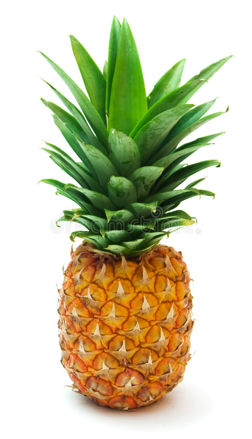 Ananas 6 photo stock