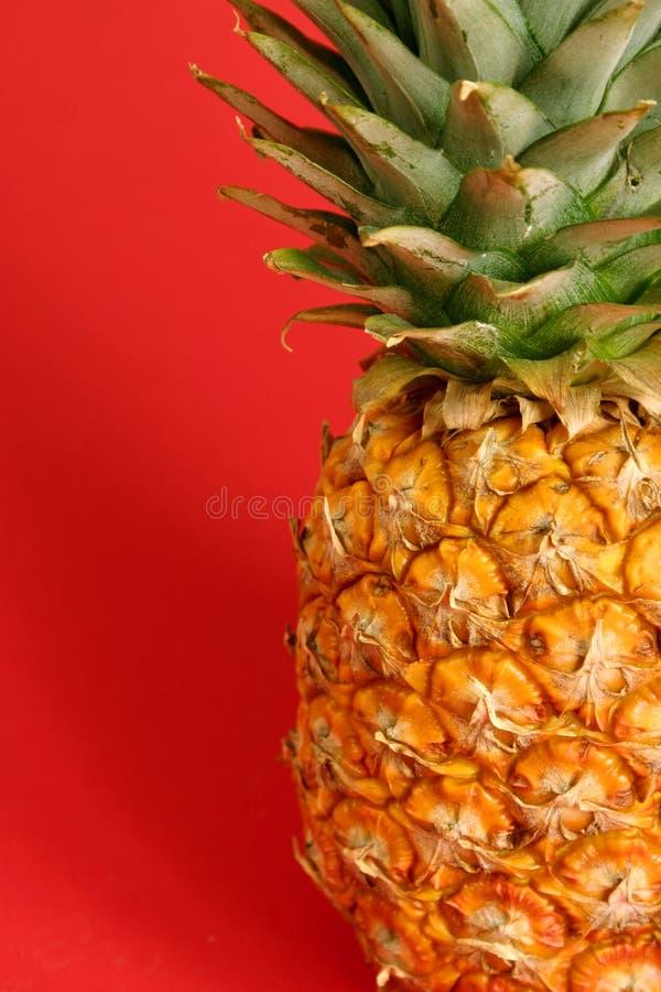 Ananas royalty-vrije stock foto