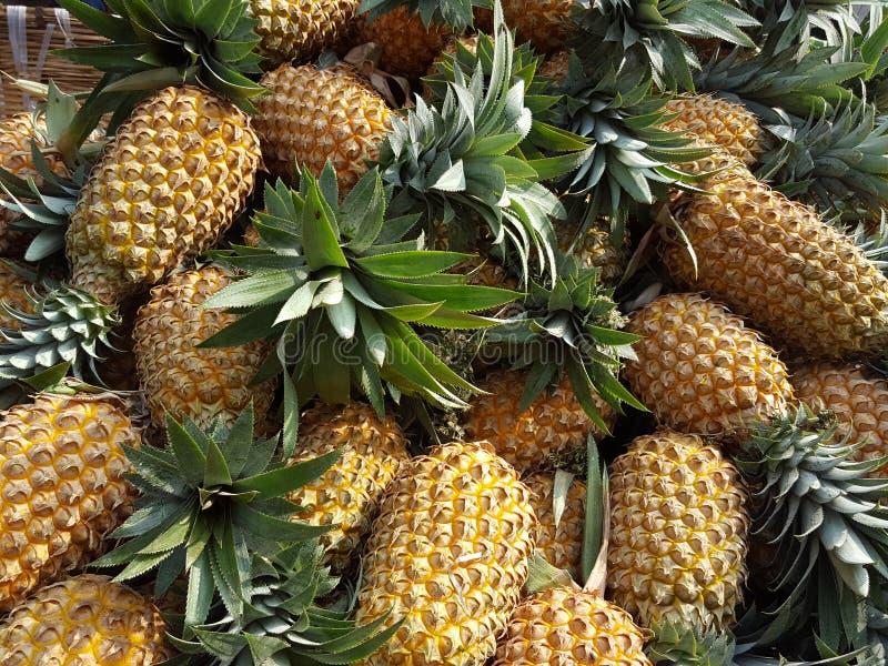 Ananas stockfoto