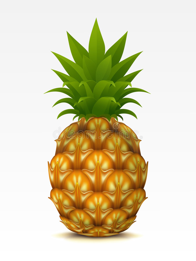 ananas illustration de vecteur