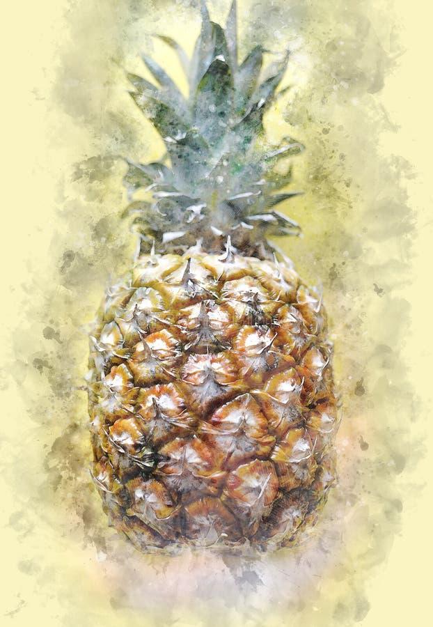 Ananas, ananas, fruit, usine photo stock