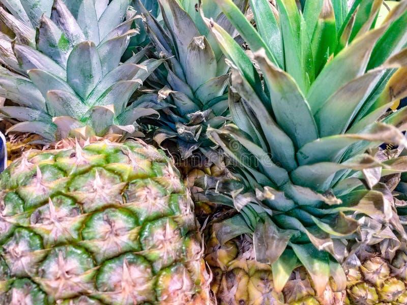 Ananas används också i apotek Från växten dras ut den aktiva ingrediensen som kallas bromelain, som är ett viktigt pro- royaltyfria foton