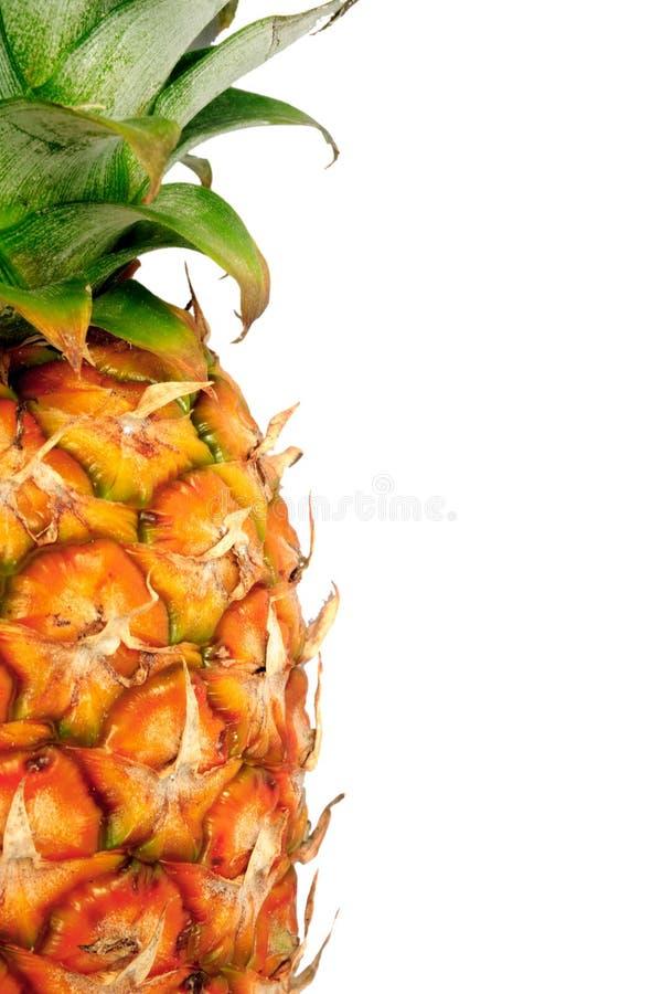 Ananas auf Weiß stockfoto