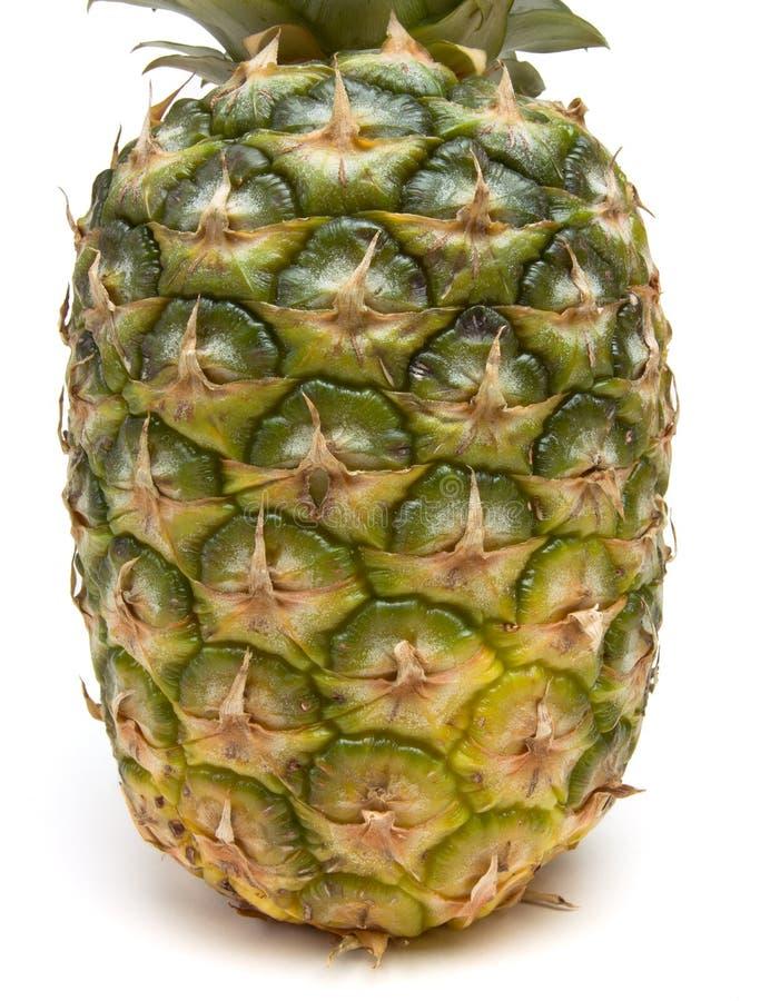 Ananas-Auszug lizenzfreie stockfotografie