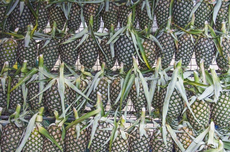 Ananas bereit, bei Phatthalung Thailand zu verkaufen lizenzfreie stockbilder