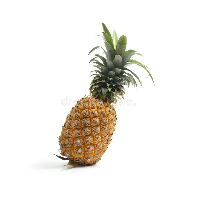 Ananas con l'isolato delle fette su fondo bianco, Frui tropicale immagini stock