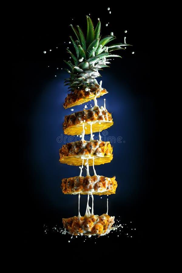 Ananas con latte contro la legge dell'attrazione fotografia stock libera da diritti
