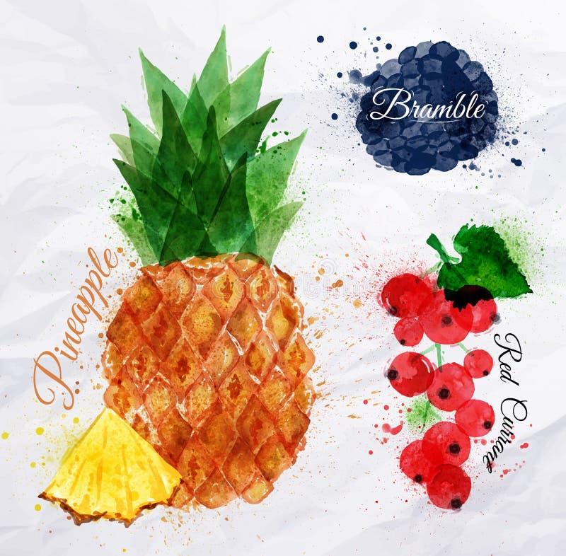 Ananas d'aquarelle de fruit, mûre, groseille rouge illustration libre de droits