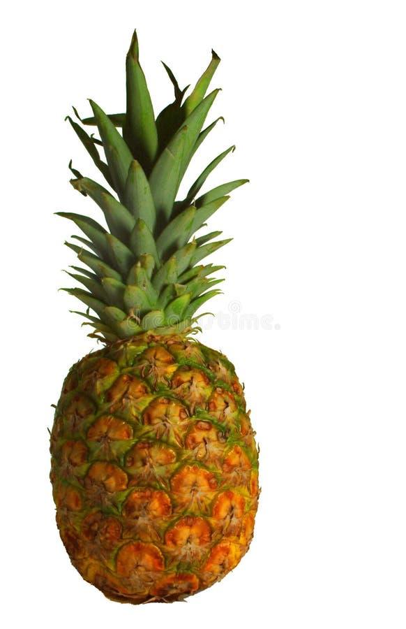 Ananas D'isolement Photo Stock