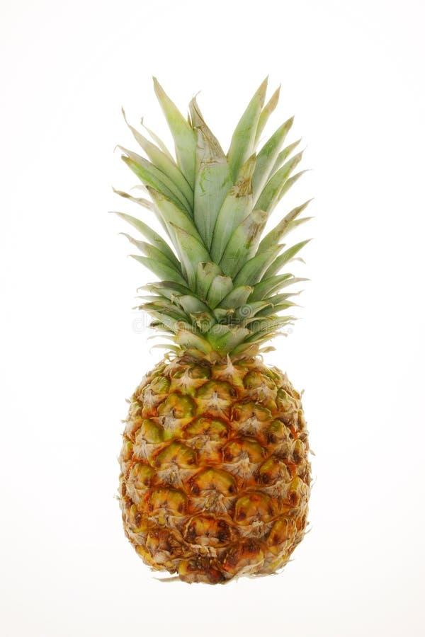 ananas de fruit image stock