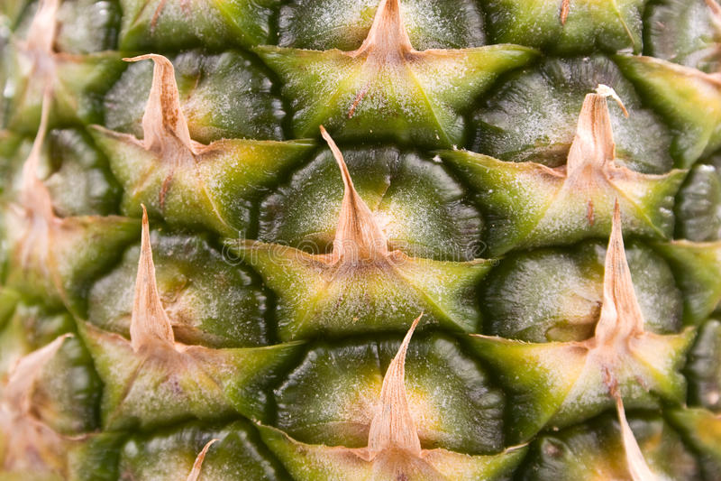 Ananas dichte omhoog 3 stock fotografie