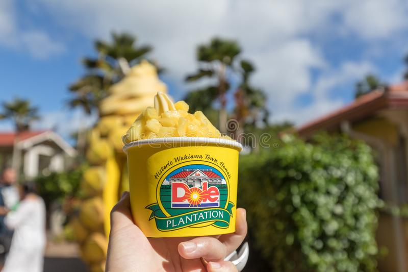 Ananas-Eiscreme an der Dole-Ananas-Plantage in Wahiawa, Hawaii stockfoto