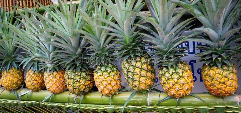 Ananas frais photographie stock