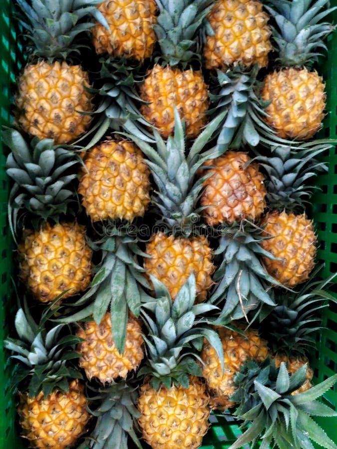 Ananas frais d'une manière ordonnée disposé dans la boîte image libre de droits