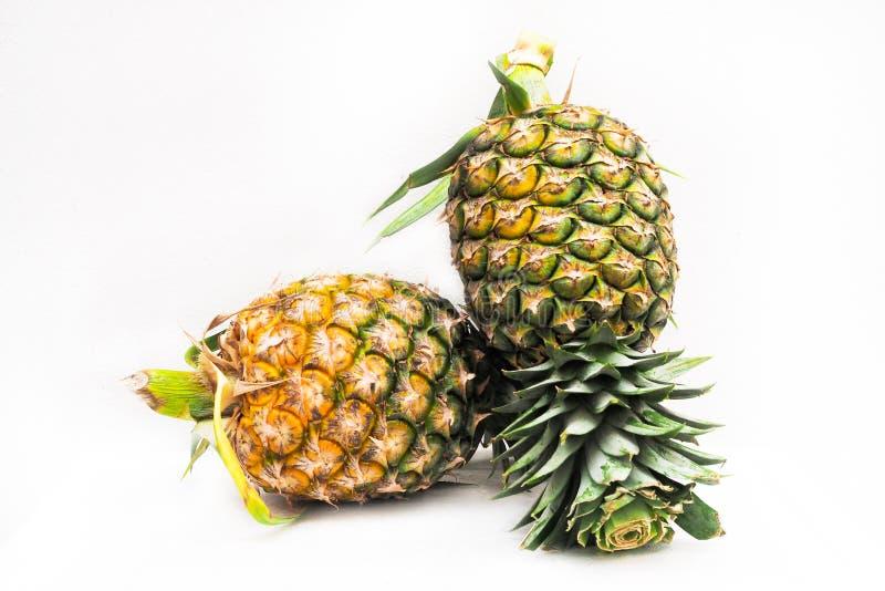 Ananas, frutta di estate isolata su fondo bianco fotografia stock libera da diritti