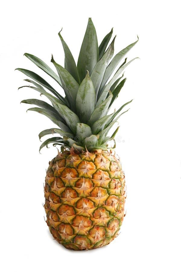 Ananas. Frutta squisita, fotografie stock