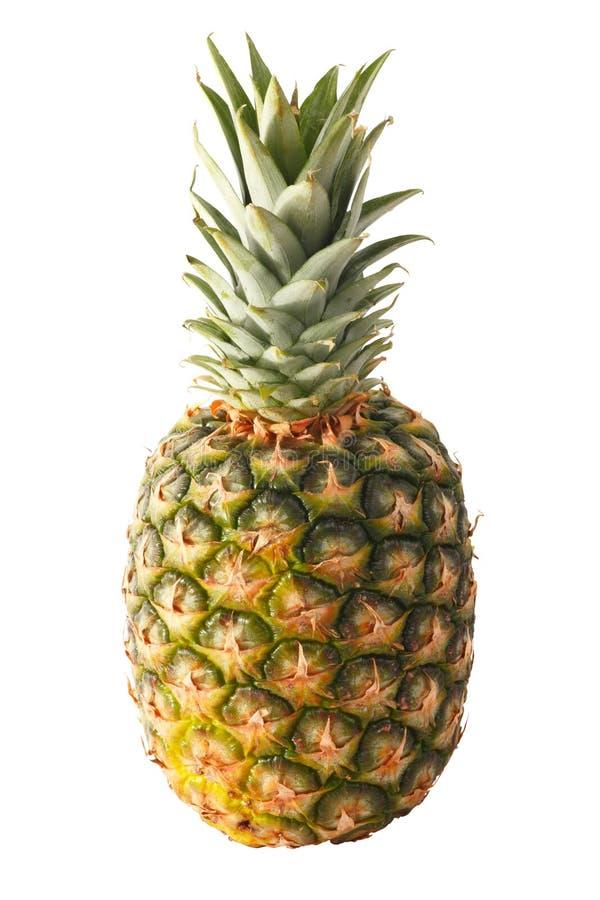 Ananas getrennt stockbild
