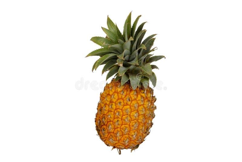 Ananas getrennt auf Weiß lizenzfreie stockfotografie