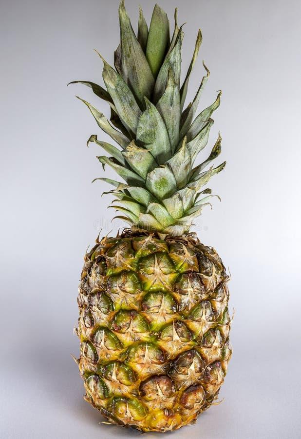 Ananas in groen en geel tegen een lichte achtergrond stock afbeeldingen