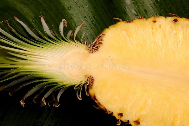 Ananas halb lizenzfreies stockfoto