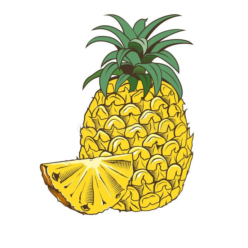 Ananas i tappningstil royaltyfri illustrationer