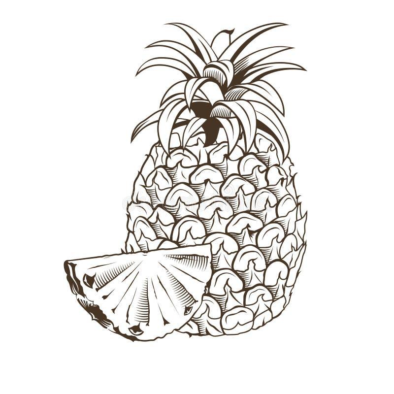 Ananas i tappningstil vektor illustrationer