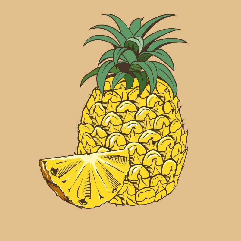 Ananas i tappningstil Kulör vektorillustration stock illustrationer