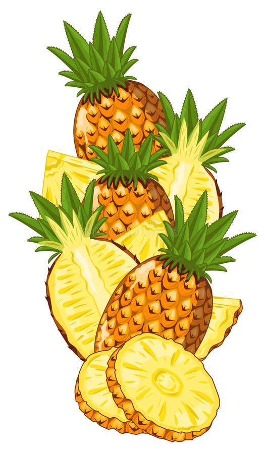 Ananas isolato, vettore, composizione illustrazione di stock