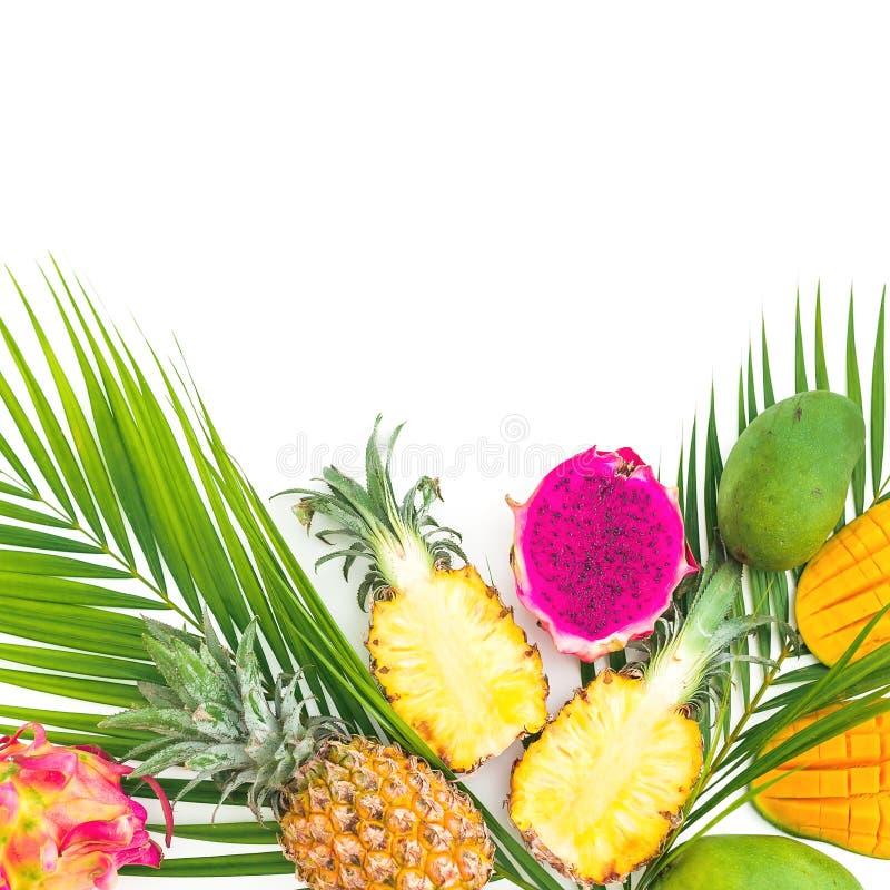 Ananas, mangue et fruits du dragon avec la palmette sur le fond blanc Configuration plate, vue supérieure Concept tropical de nou photo stock