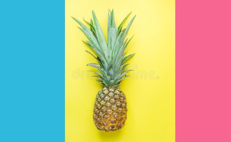 Ananas maturo con le foglie verdi folte sul triplo Tone Pink Blue Yellow Background di spaccatura Frutti tropicali di viaggio di  fotografia stock