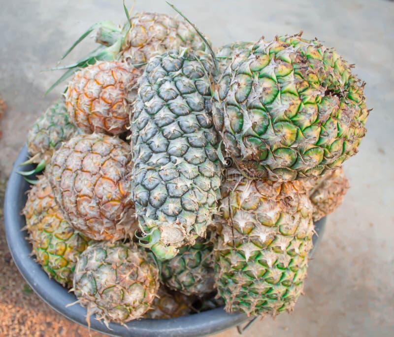 Ananas maturo variopinto in un canestro immagini stock libere da diritti