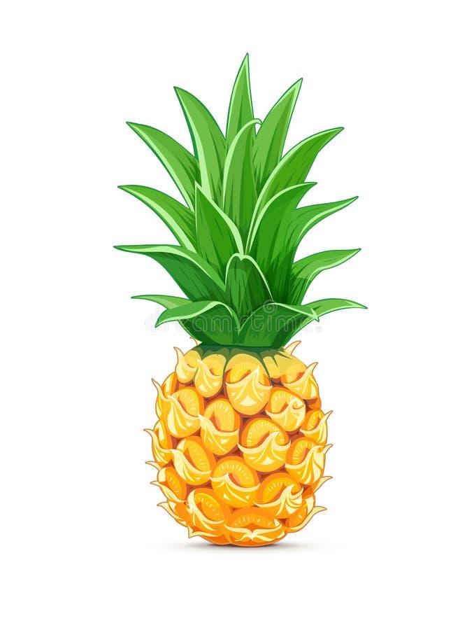 Ananas med det gröna bladet tropisk frukt vektor illustrationer
