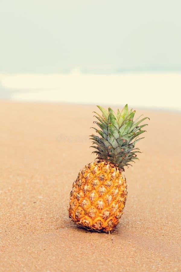 Ananas na piasku obrazy stock