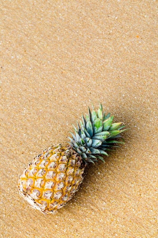 Ananas na złotym piasku, odgórny widok obraz royalty free