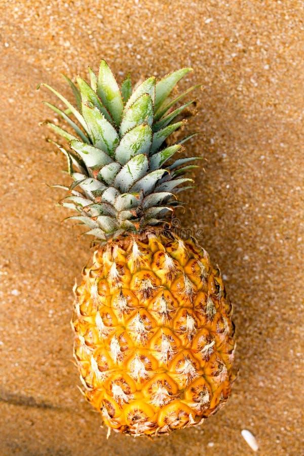 Ananas na złotym piasku w górę, odgórny widok obrazy stock