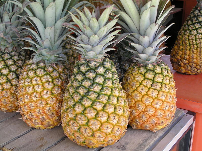 Ananas ny frukt, Puerto Rico royaltyfri fotografi