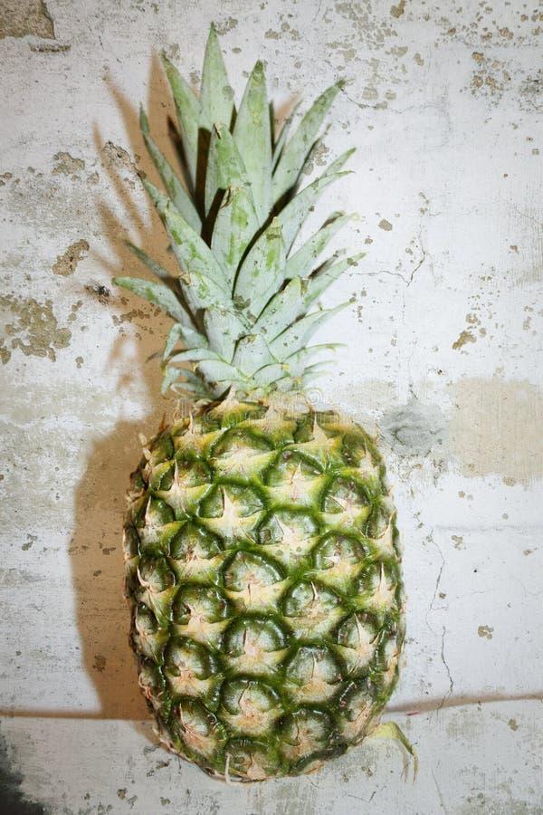Ananas op de muur royalty-vrije stock fotografie