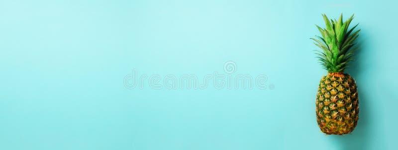 Ananas på blå bakgrund Top beskådar kopiera avstånd Modell för minsta stil Design för popkonst, idérikt begrepp baner royaltyfri foto