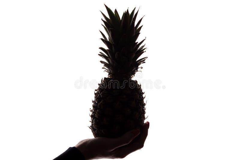 Ananas p? en hand f?r kvinna` s p? vit bakgrund arkivfoton