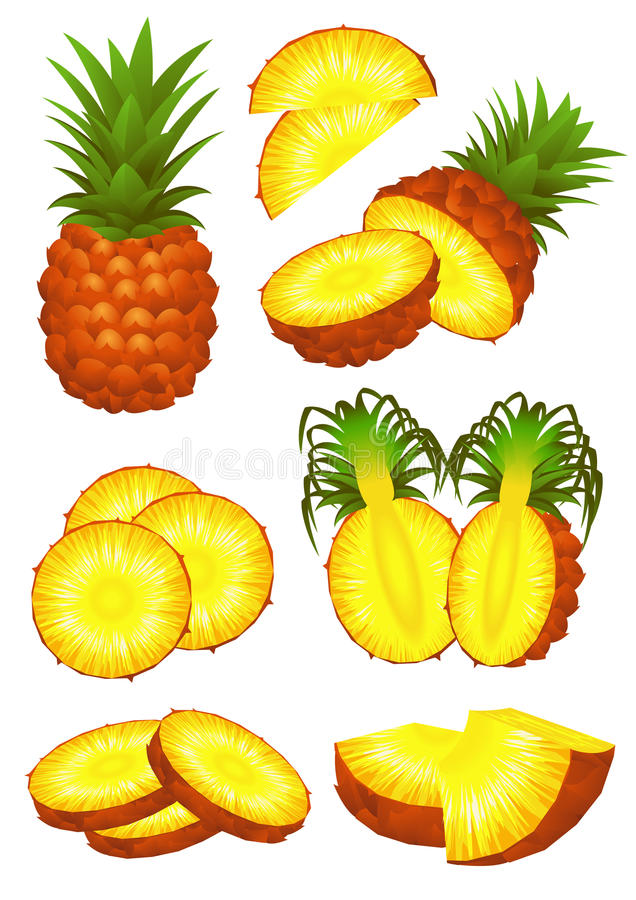 Download Ananas piece set stock vector. Illustration of food, gourmet - 14854117