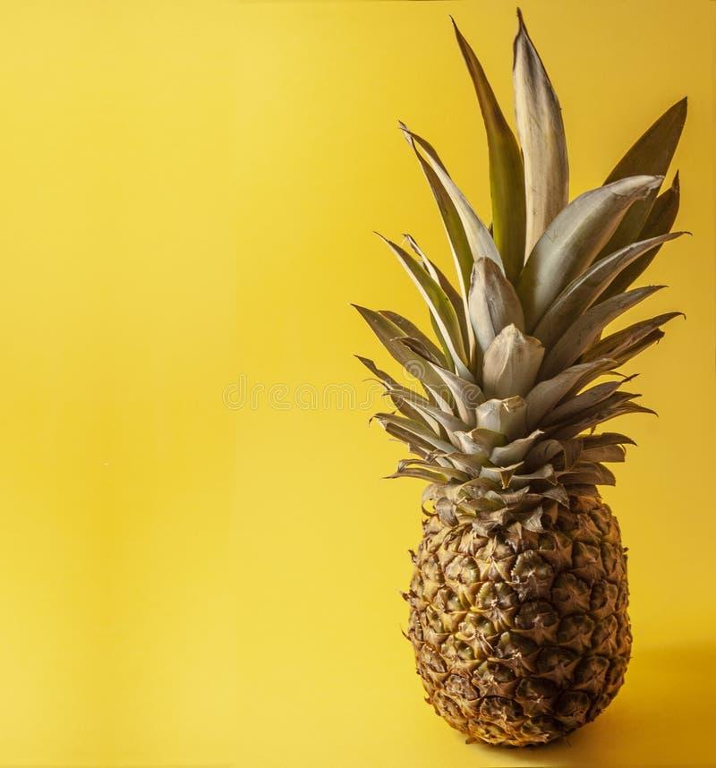 Ananas simple d'isolement sur le fond jaune, négatif, l'espace photos stock