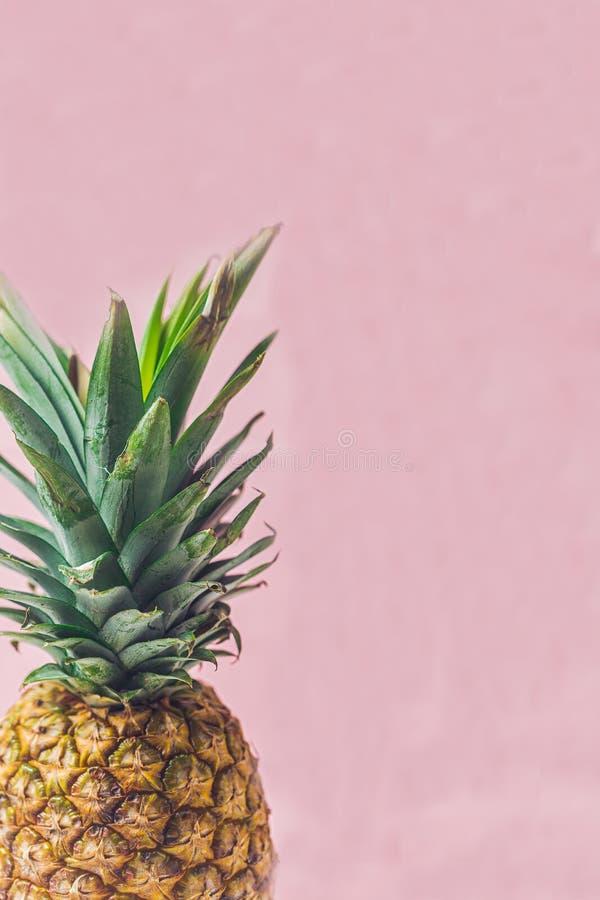Ananas su un fondo bianco fotografia stock