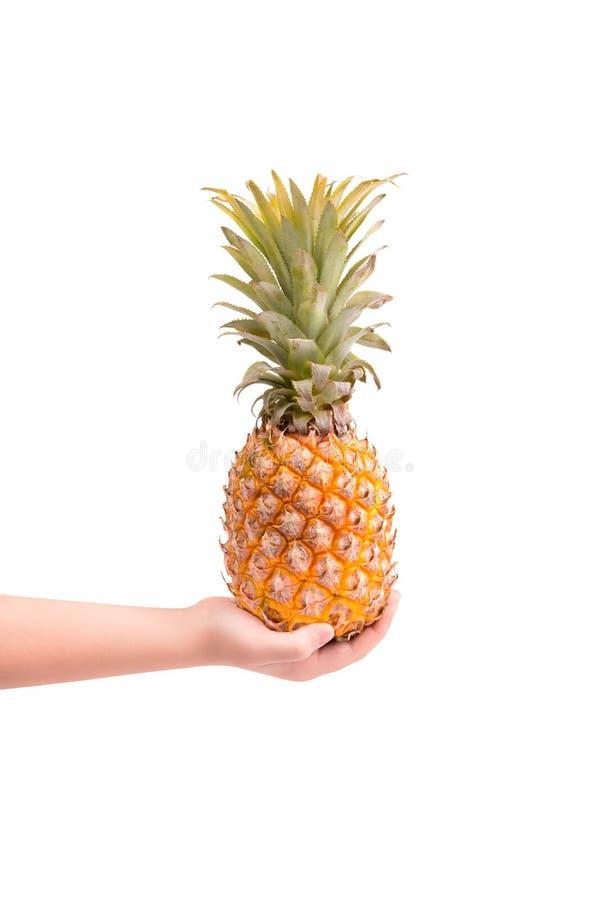 Ananas succoso a disposizione su un fondo bianco fotografie stock