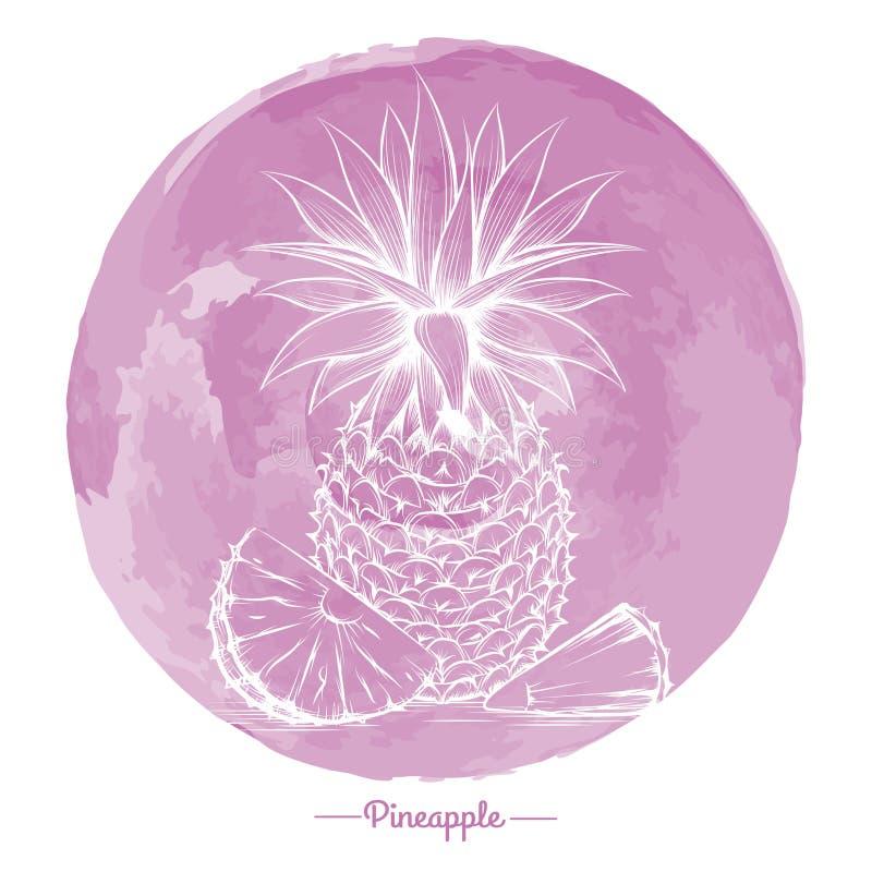 Ananas sul cirlce di rosa dell'acquerello royalty illustrazione gratis