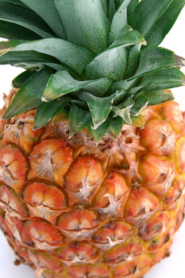 Ananas sul primo piano bianco immagine stock libera da diritti