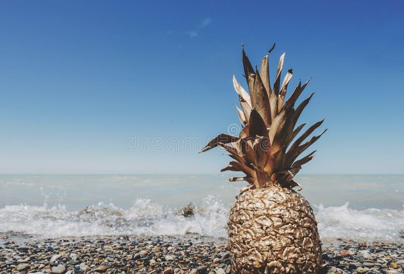 Ananas sur la plage images libres de droits
