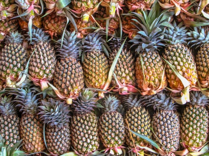 Ananas sur le marché à vendre images libres de droits
