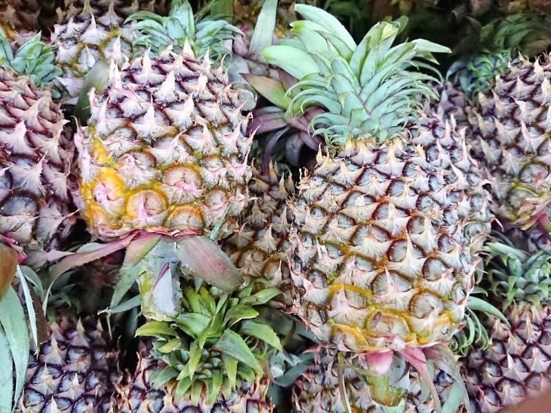 Ananas sur le marché images libres de droits