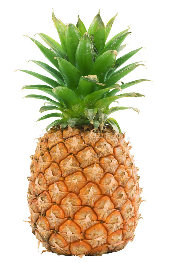 Ananas trennte lizenzfreie stockfotos