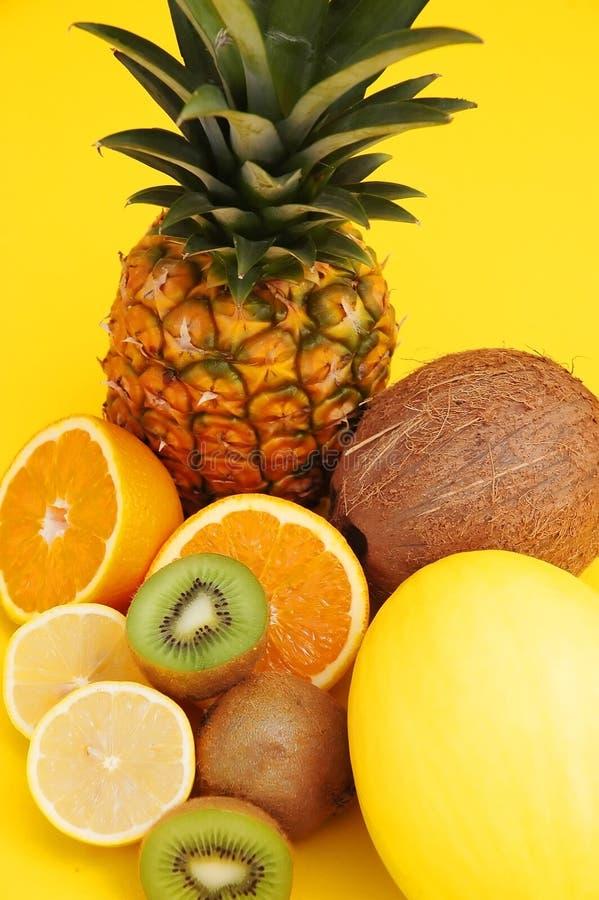 Ananas und Melone, Kokosnuss und Zitrusfrucht lizenzfreies stockfoto